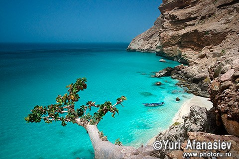 Yemen & Socotra photo tours. Shuab Bay, Photographer Yuri Afanasiev