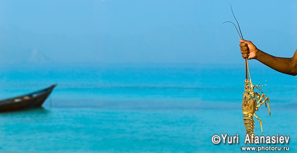 Панорамная фотография, панорамная съемка. Фотограф Юрий Афанасьев. Фото панорама Йемен